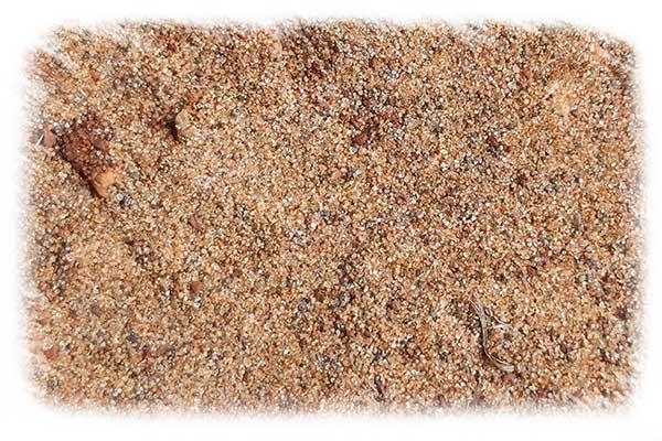 arena para plantas de terrario