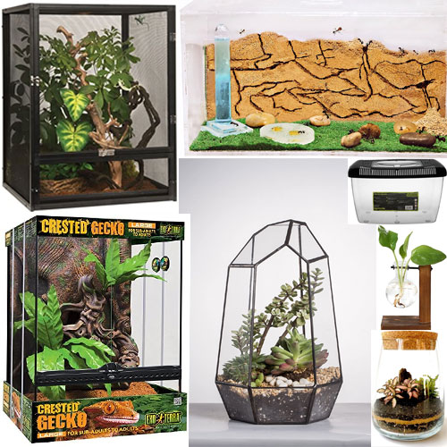 comprar terrario eterno, terrario artificial comprar, venta terrarios baratos, venta terrarios online, comprar terrario online