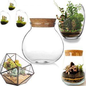 venta de jardines en miniatura, Comprar terrario plantas, Comprar terrario de plantas