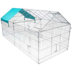 recinto exterior tortuga de tierra