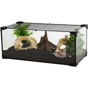 kit terrario tortuga de tierra