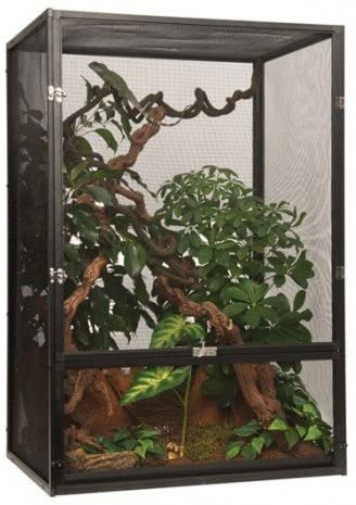 kit terrario camaleon