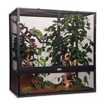 terrario camaleon precio